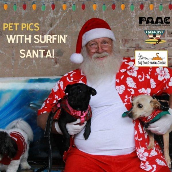 Pet Pics with Surfin' Santa @ Executive Surf Club | Corpus Christi | Texas | United States